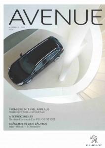 Avenue_Jan2011