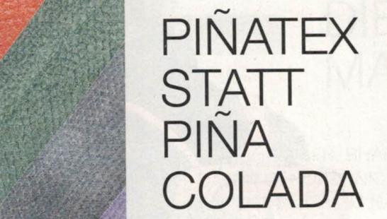 Pintatex